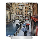 Snow Flurry In Venice Shower Curtain