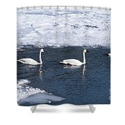 Snow Geese On The Move Shower Curtain