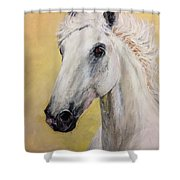 Snow White Horse  Shower Curtain