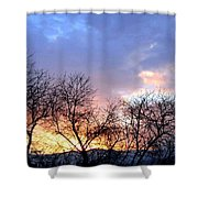 Snow In The Distance Shower Curtain