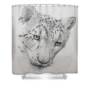 Snow Leopard - Intent Shower Curtain