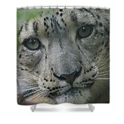 Snow Leopard 10 Shower Curtain