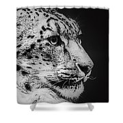 Snow Leopard Shower Curtain by Jeff Swanson