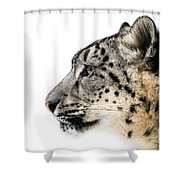 Snow Leopard Xv Shower Curtain