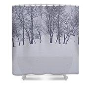 Snow Line Shower Curtain