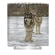 Snow Mates Shower Curtain