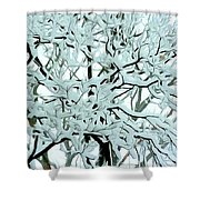 Snow On Branches Shower Curtain