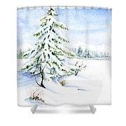 Snow On Evergreens Shower Curtain