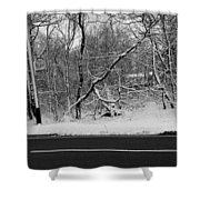 Snow On Fallen Tree Shower Curtain