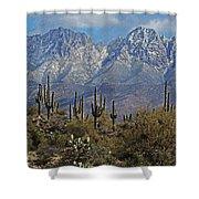 Snow On Four Peaks Arizona No Snow On Saguaros Shower Curtain