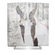 Snow On Paint Shower Curtain