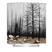 Snow On Rocks Shower Curtain