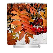 Snow On Scarlet Magick Shower Curtain