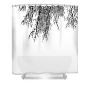 Snow On The Branches Three  Shower Curtain