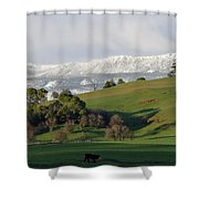 Snow On The Great Western Tiers, Tasmania Shower Curtain