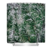 Snow On The Pine Shower Curtain