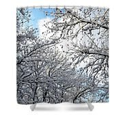 Snow On Trees Shower Curtain