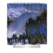 Snow Ornament - Joshua Tree Shower Curtain