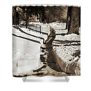 Snow Paths And Winter Shadows Shower Curtain