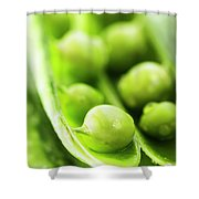 Snow Peas Or Green Peas Seeds Shower Curtain