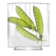 Snow Peas Shower Curtain