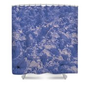 Snow Prints Shower Curtain