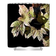 Snow Puff Leaves Shower Curtain