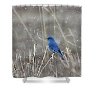 Snow  Shower Curtain by Ronnie and Frances Howard