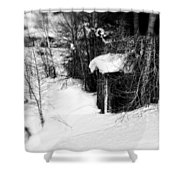 Snow Scene Shower Curtain
