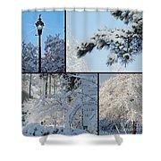 Snow Scenes Of Charleston Sc Shower Curtain