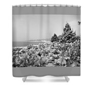 Snow Settles On The Lake Shore Shower Curtain