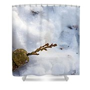 Snow Sprouts Shower Curtain