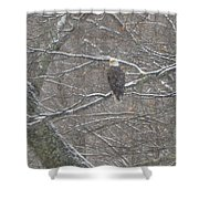 Snow Storm Shower Curtain