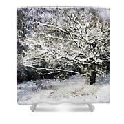 Snow Tree Shower Curtain