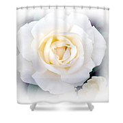 Snow White Shower Curtain by Kathy Bucari