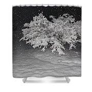 Snow White Tree Shower Curtain