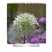 Snowball And The Bumblebee Shower Curtain