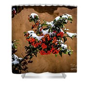 Snowberries Shower Curtain