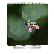 Snowberry Blossom Shower Curtain
