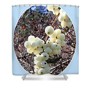Snowberry Cluster Shower Curtain