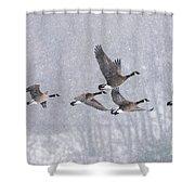 Snowbound Arrivals Shower Curtain