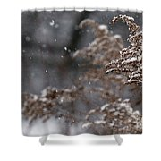 Snowfall Shower Curtain