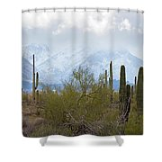 Snowfall On The Mountains Shower Curtain