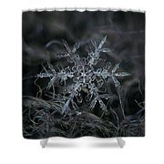 Snowflake 2 Of 19 March 2013 Shower Curtain by Alexey Kljatov