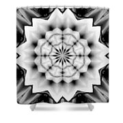 Snowflake 9 Shower Curtain