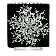 snowflake I Shower Curtain