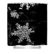 Snowflake Jewels Shower Curtain