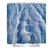 Snowforms 1 Shower Curtain