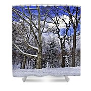 Snowman In Central Park Nyc Shower Curtain
