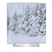 Snowmen In France Shower Curtain